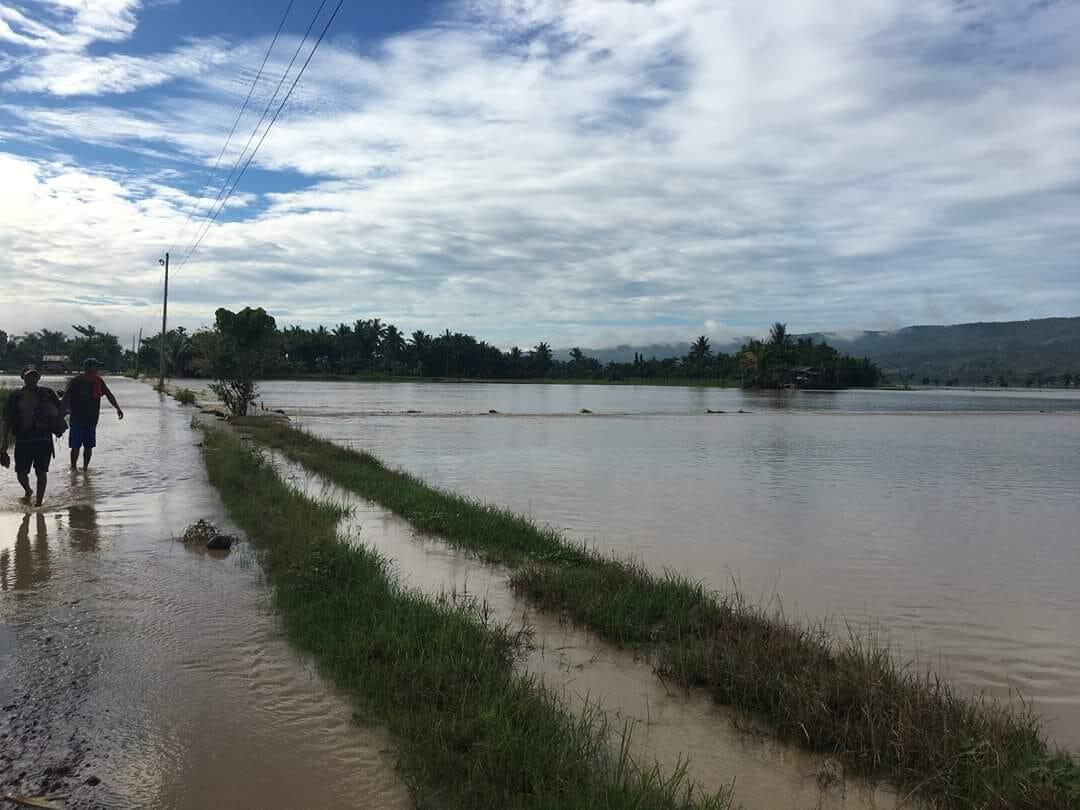 Zamboanga del Sur Rice Field Flooding
